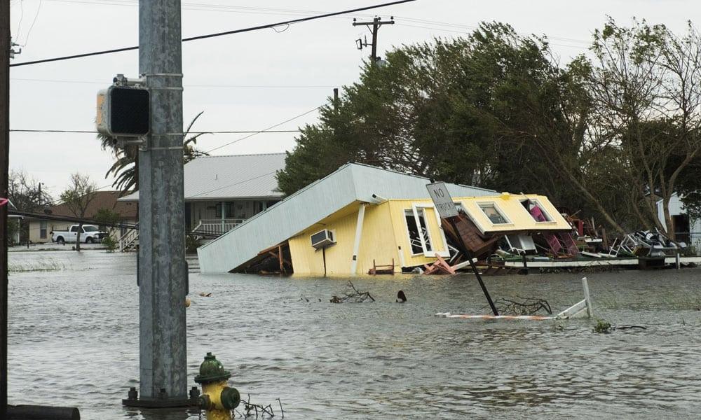 storm damage companies